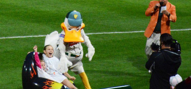 The Ducks' attendance streak secret